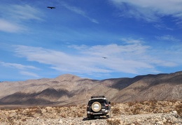 A pair of ravens fly over the FJ