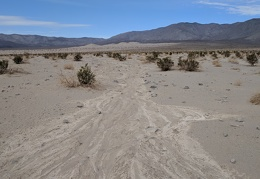 I start by following one of the drainages that lead to Panamint Dry Lake